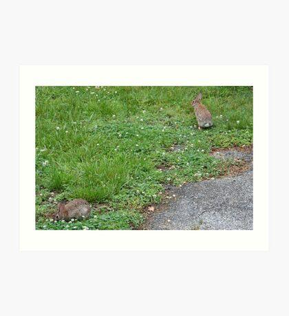Jack and Bunny Rabbit Art Print