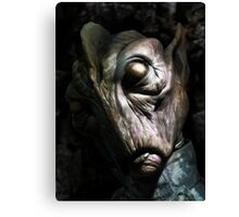 Fan Head Canvas Print