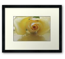 Burst of Sunshine ~ Yellow Rose Framed Print
