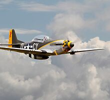 Mustang P51D - Miss Velma by warbirds