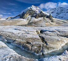 Alaska Glacier by Bruce Taylor
