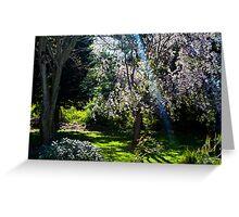 Enchanted Back Yard Greeting Card