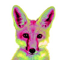 Psychedelic Fox by pocketsoup