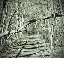 Susquehanna Trail by JackP