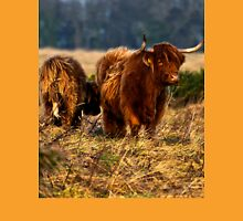 Highland cow and her calf Unisex T-Shirt