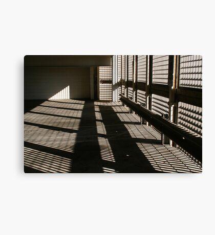 Shadow Mania Canvas Print