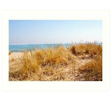 Lake Michigan Sand Dune Grasses Art Print