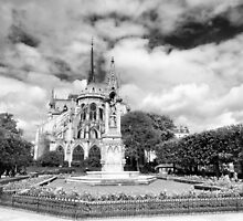 Owning the landscape - Notre Dame Paris by Norman Repacholi
