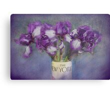 Iris in the New Yorker Canvas Print
