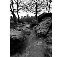 Path. Rock. Central Park. Photographic Print