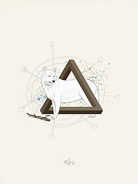 Wolf Triangle by Martin Kofod