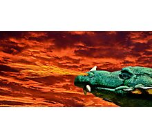 Reign of Fire Photographic Print