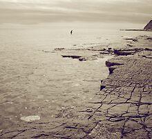 Lone Paddler by Jamie Harrington