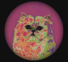 Psychedelic Cat II by pocketsoup