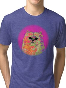 Psychedelic Cat II Tri-blend T-Shirt