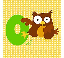 o for owl Photographic Print