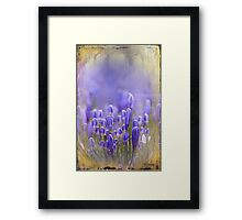 Feelin' Blue Framed Print