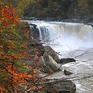 Cumberland Falls in Fall by Nicole  McKinney