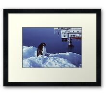 Adelie and Icebird Framed Print