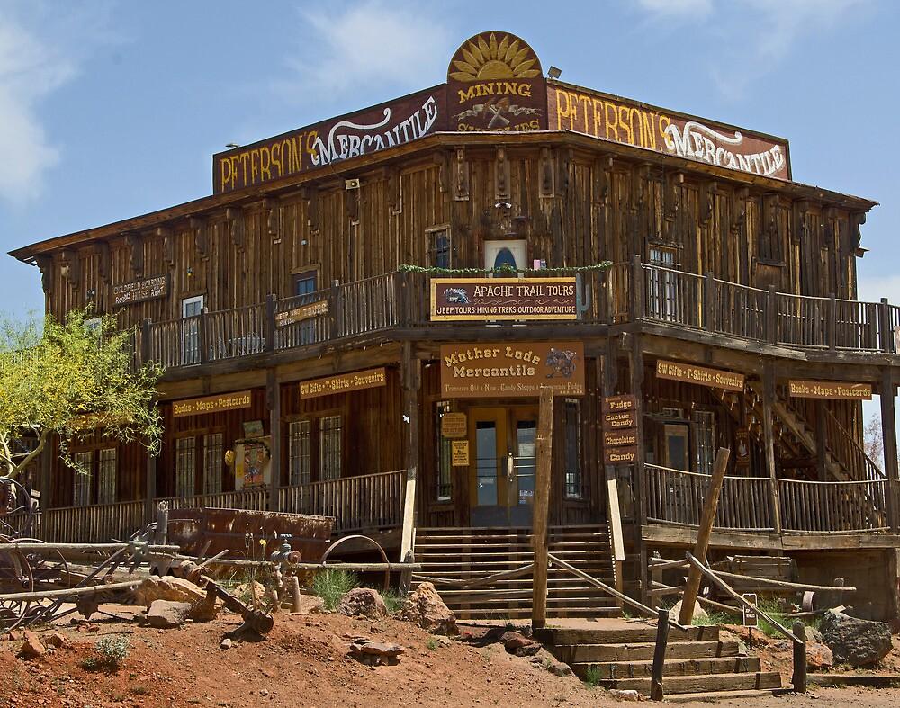 Goldfield Mercantile  by John  Kapusta