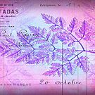 French Purple/Pink Grunge Fern Postcard by debsrockine