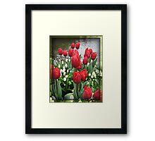 Velvety Red Tulips and White Muscari - Keukenhof Gardens Framed Print