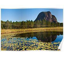 Mt Tibrogargan Pond Reflection Poster