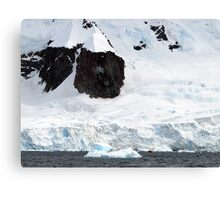 Enormous scale , Antarctica Canvas Print