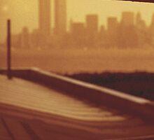 World Trade Center - Towers 1 & 2 by peterrobinsonjr