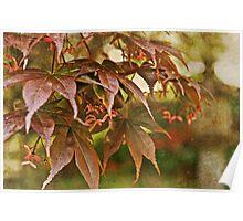 The Whisper of Leaves Poster