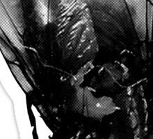 BLACK METAL FLY - ORIGINAL PHOTOGRAPHY Sticker