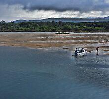 Fishing for Sandworm by Jennifer Craker