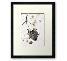 Autumn in Black & White Framed Print