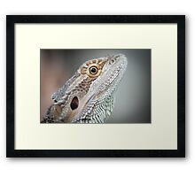 Portrait of a Dragon Framed Print