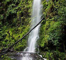 Erskine Falls by Simon Penrose