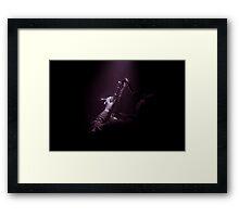 Mister Bojangles Framed Print