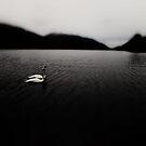Swan Loch by sammythor