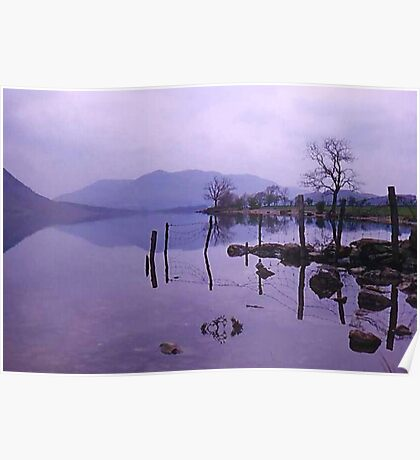 Tranquil Lakeside Poster