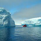 Beautiful Bergs Of Antarctica by cactus82