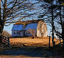 The Old Homestead by Debbie  Roberts