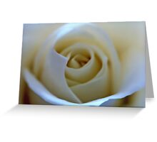 White Rose Flower Greeting Card