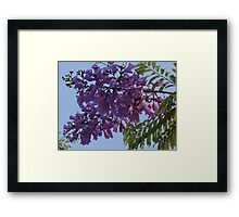 Another Jungle's Beauty - Otra Belleza De La Selva Framed Print