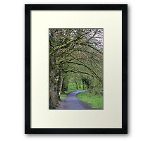 A Walk in Ireland Framed Print