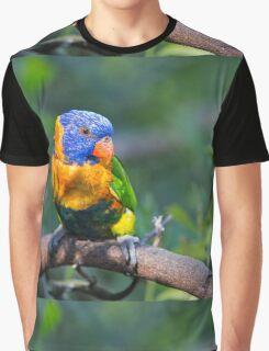 Colourful Character - Rainbow lorikeet Graphic T-Shirt