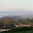 Treffgarne Rock in the mist by Anthony Thomas