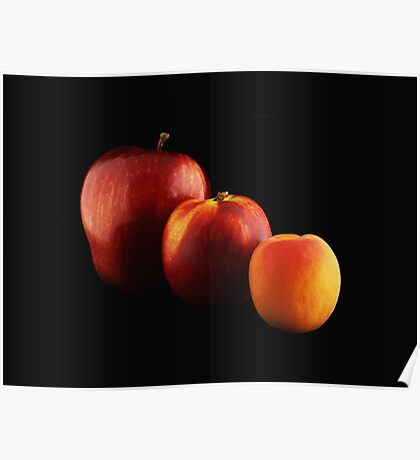 Fruits Lineup Poster
