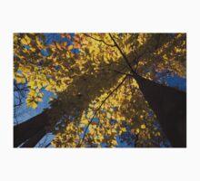 Autumn Shadows Geometry  One Piece - Short Sleeve