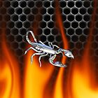 Chrome scorpion and fire Design 1 by Skatersollie