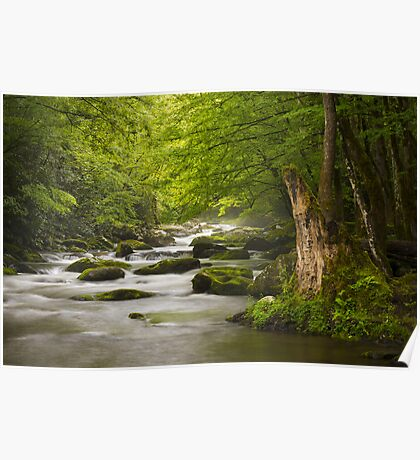 Smoky Mountains Solitude - Great Smoky Mountains National Park Poster