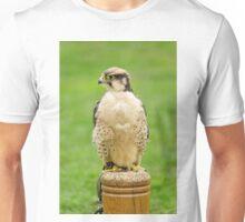 Lanna Falcon (Falco biarmicus) Unisex T-Shirt